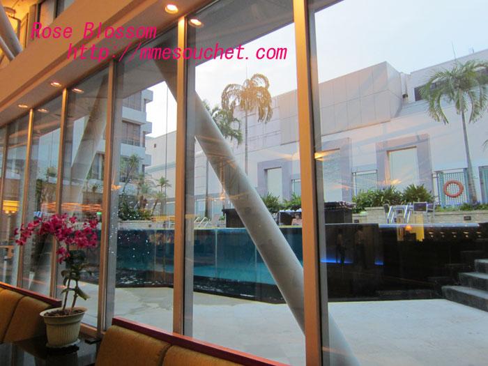 pool201112072.jpg