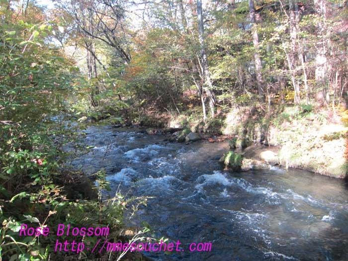 river201210251.jpg