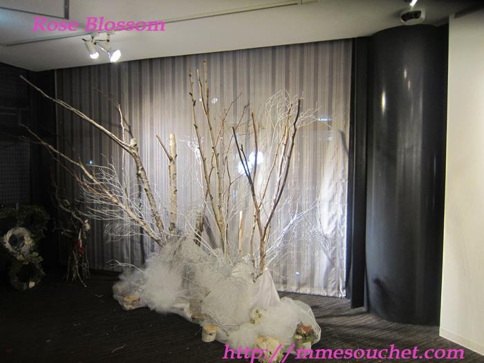 sirakaba201112161.jpg