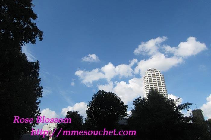sky201109111.jpg