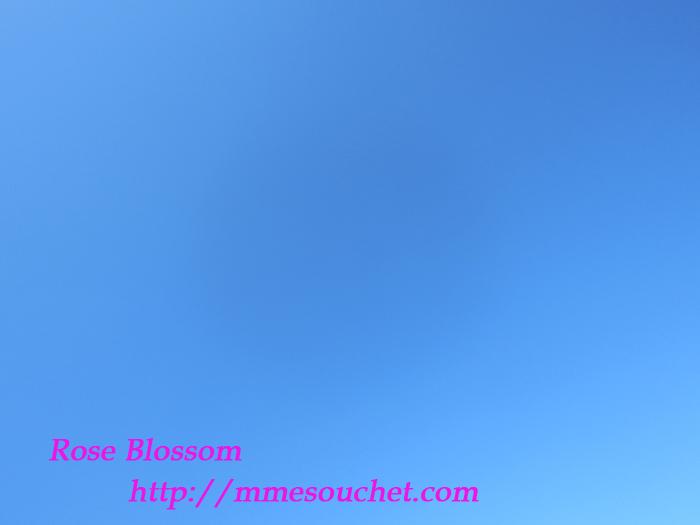 sky20111102.jpg