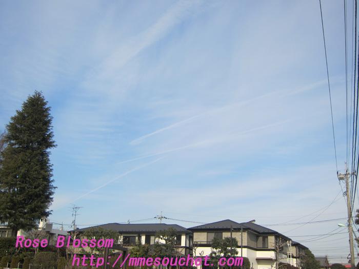 sky20120119.jpg