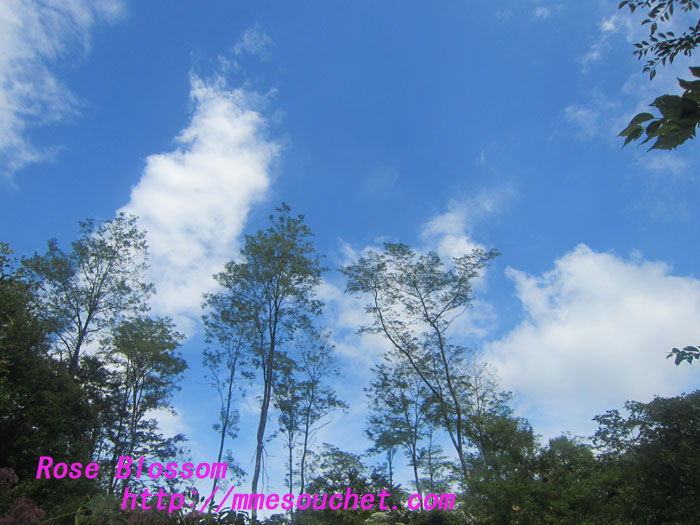 sky20120901.jpg
