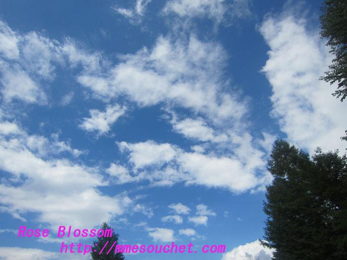 sky201209011.jpg
