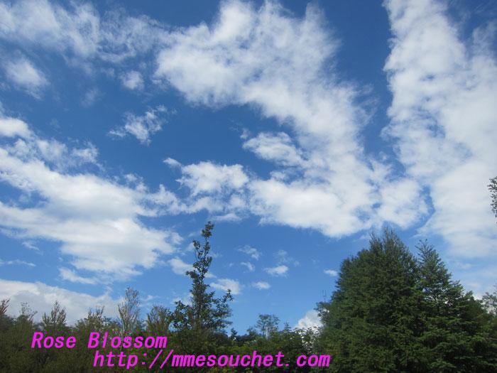 sky201209013.jpg