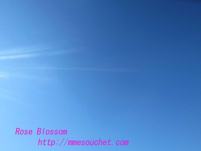sky20121208.jpg
