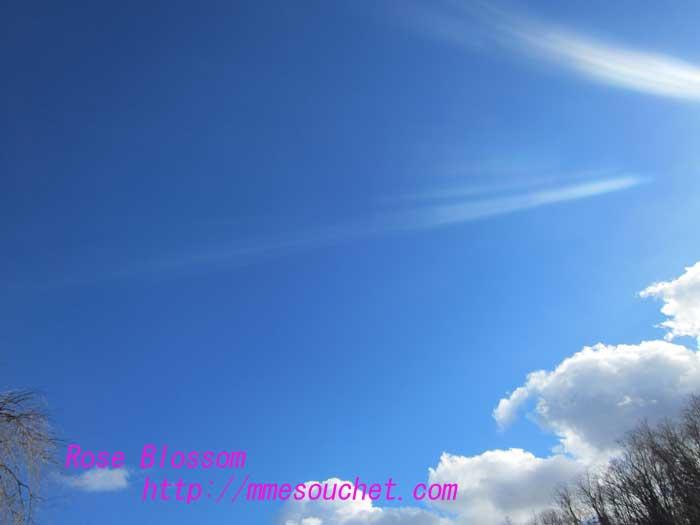 sky20121210.jpg