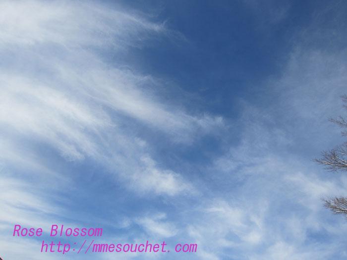 sky20130207.jpg