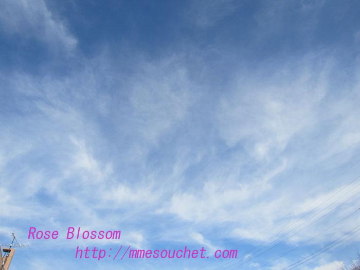 sky201302071.jpg