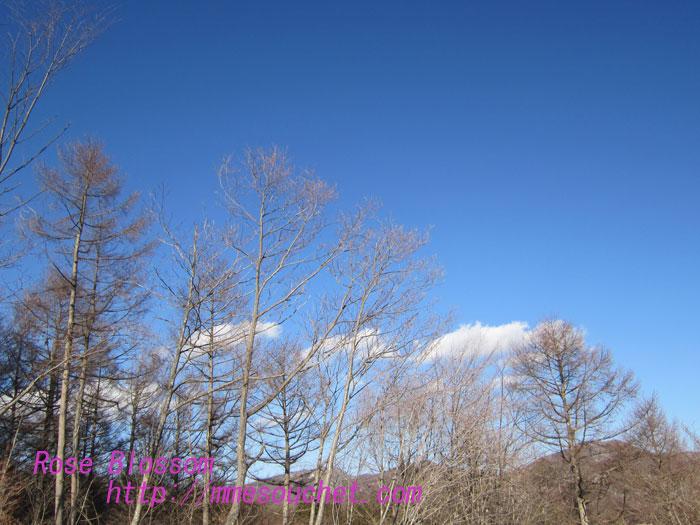 sky201302101.jpg