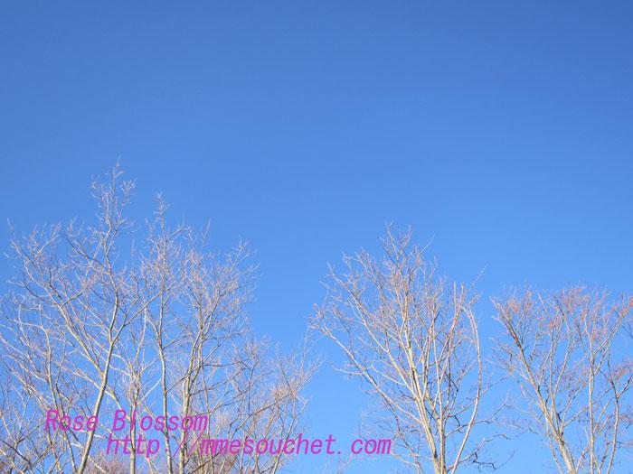 sky201302102.jpg