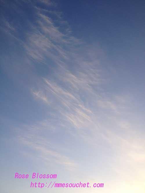 sky20130303.jpg