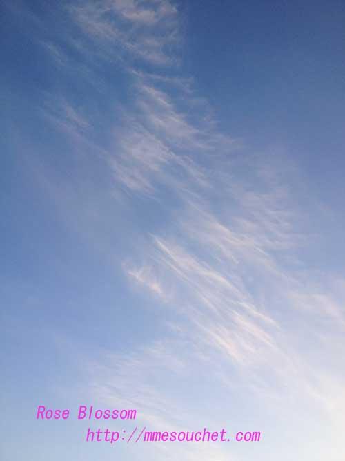 sky201303031.jpg