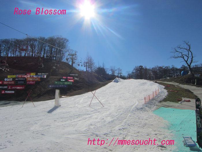 snow20111125.jpg