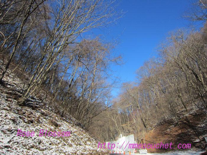 snow201112281.jpg