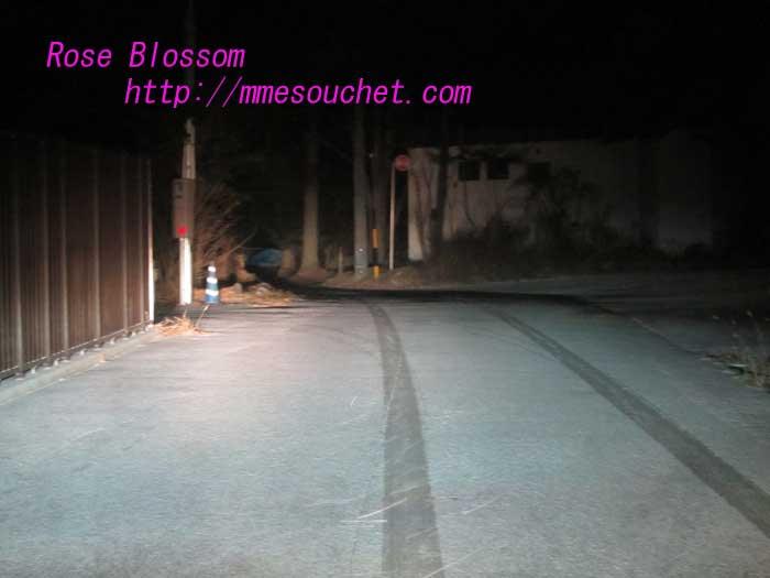 snow20121208.jpg