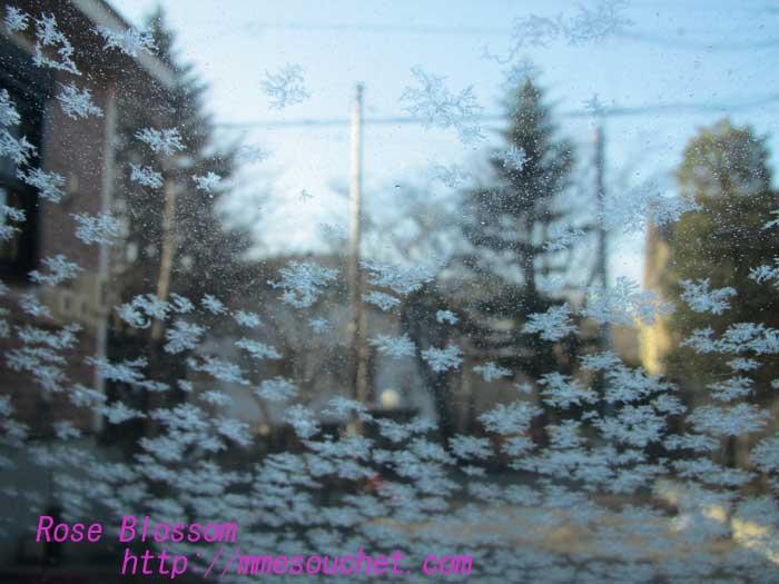 snow20130322.jpg