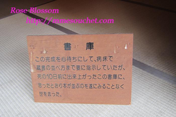 syokoboard20110920.jpg