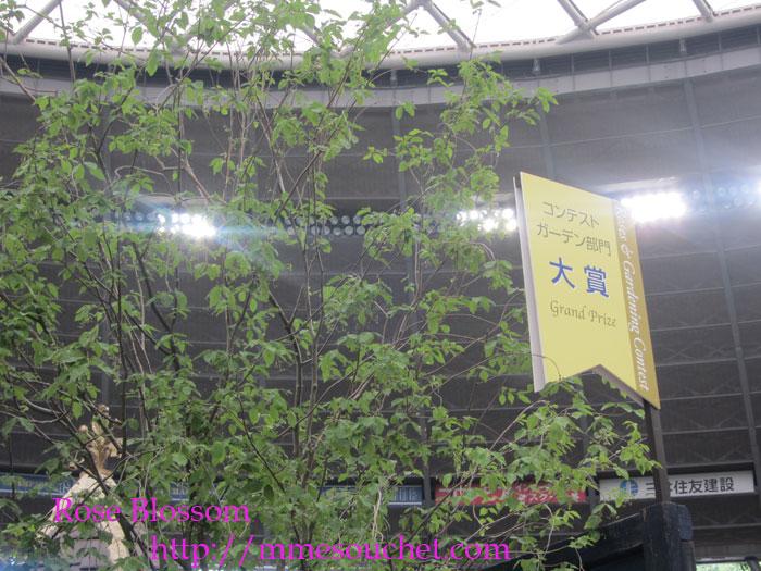 taisyoboard20120520.jpg
