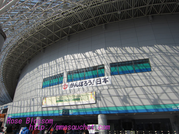 tokyodome20130211.jpg