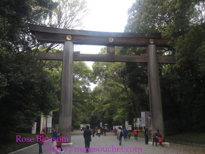 torii20120422.jpg