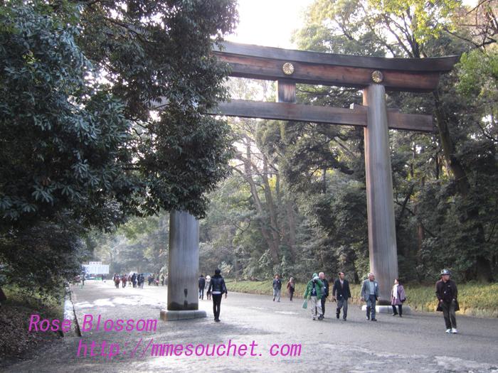 torii20130122.jpg