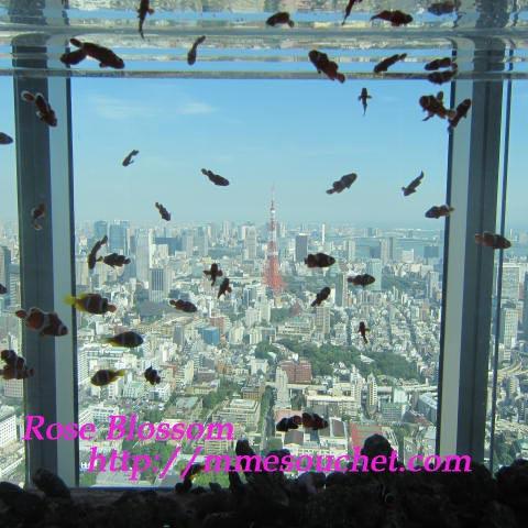 tower20110908.jpg