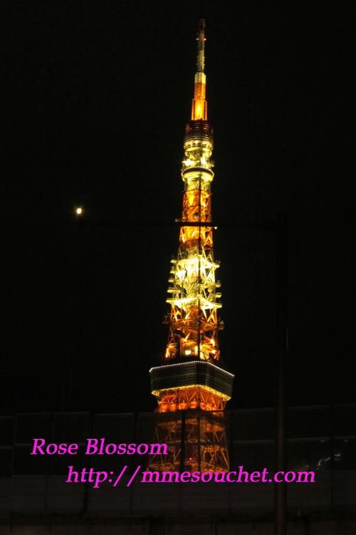 tower201109221.jpg