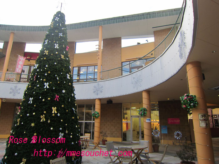 tree20111118.jpg