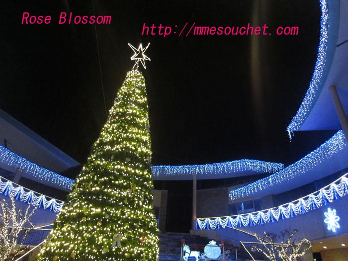 tree20111120.jpg
