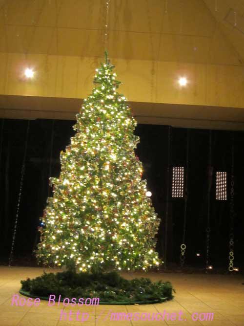 tree20121212.jpg