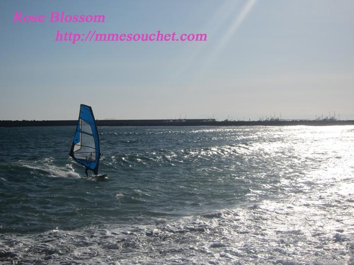 wind20120204.jpg