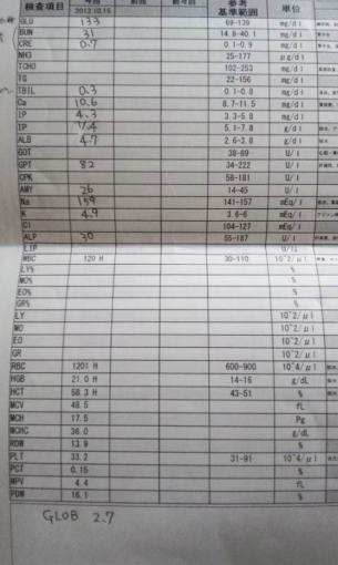 2012年10月15日マルコの血液検査データ