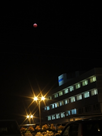 皆既月食 20141008