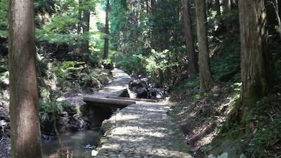 gohotaki02.jpg