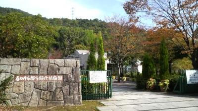 greenka01.jpg