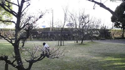 kiyosu04.jpg