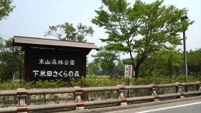 minokamosa01.jpg
