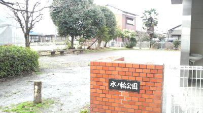 mizunowa01.jpg