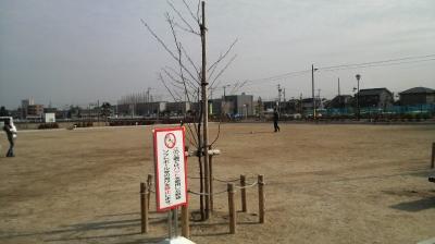 nagase05.jpg
