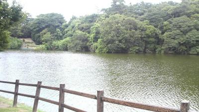 syurakuen02.jpg