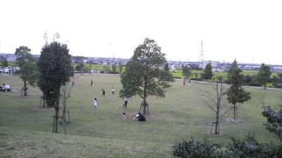 tshinmei11.jpg