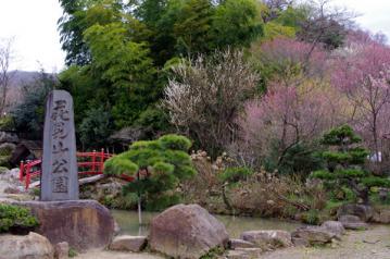 hanamiyama.jpg