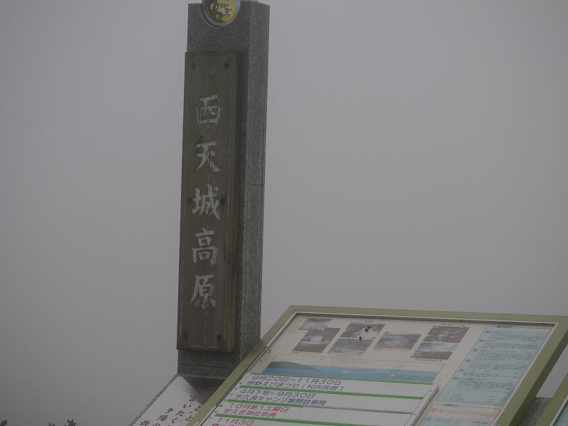 P1110114.jpg