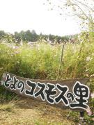 NCM_0468.jpg