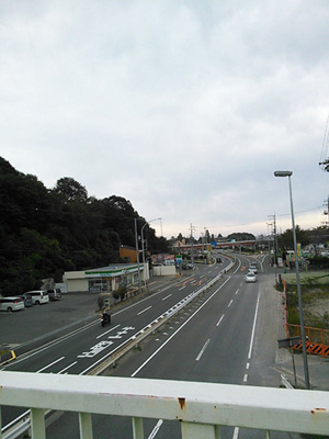 NCM_0535.jpg