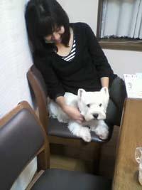 blog11-11-08_0181.jpg