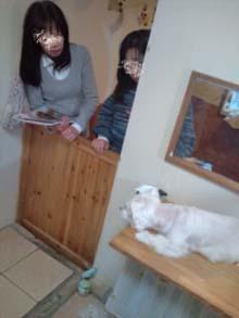 blog20111203152538.jpg