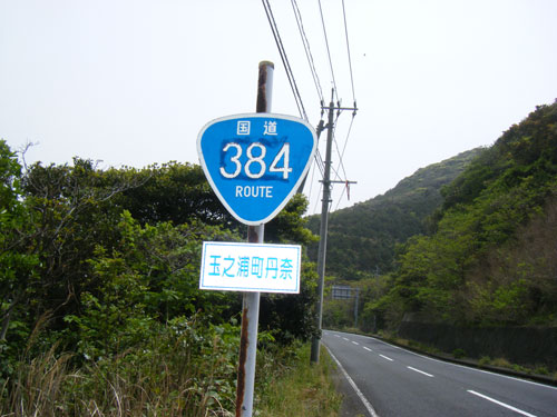 R384.jpg