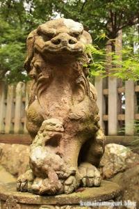 三国神社(福井県坂井市三国町山王)14